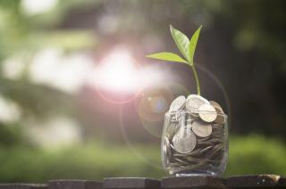 Jar of money sprouting a leaf under the sun